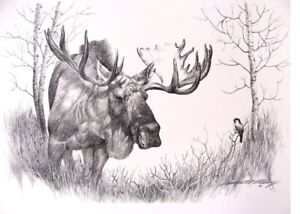 BULL MOOSE PENCIL Artist Proof LIMITED EDITION numbered Print Artist Signature