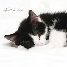 Cats protection carte-Cat Nap