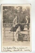 Real Photo Postcard Ostrich Riding at Cawston Ostrich Farm South Pasadena Ca