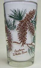 Eastern White Pine Peanut Butter Glass Glasses Drinking Kitchen Mauzy 57-3
