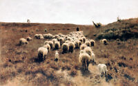 Return of the Flock-Laren by Anton Mauve 75cm x 46.5cm Canvas Print