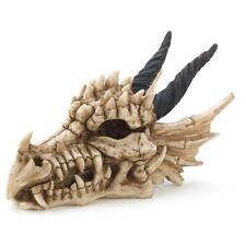 Dragon Skull Head Trinket Box Keepsake Treasure Jewelry Mythical Fantasy Figure