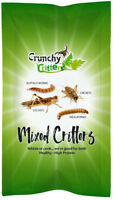 Edible Insects Edible Bugs Bush Tucker Mixed Critters 20g Crunchy Critters