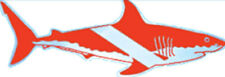 "Scuba Diving Bumper Sticker Decal ""Dive Flag Shark"" 6"" DS62"