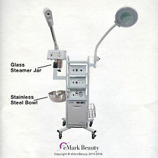 11 in 1 T3A Multifunction Facial Machine Ozone Steamer Flex Arm Magnifying Lamp