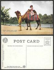 Old Postcard - New York City - Zoological Park - Riding a Camel