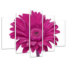 Set of 5 Panel Pink Canvas Wall Art Pictures Girls Bedroom Prints 5099
