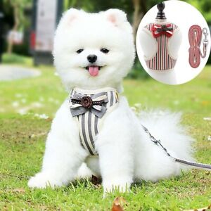 Pet Cat Bow Harness Vest Leash Collar Dogs Strap Leashes Puppy for Small Dog Cat
