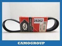 Belt Service V-Ribbed Belt Gates FIAT Punto Second Series 1999 2010 5PK1173