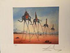 Salvador Dali Litografia 50 x 65 Bfk Rives Timbro a secco Firmata a Matita D2017