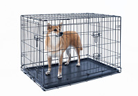 24 inch dog crate folding Portable metal pet cage 2 door with Tray black Kennel