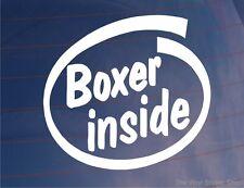 Boxer Interior Novedad car/van/window / calcomanía-Ideal Para Boxer los dueños de perros