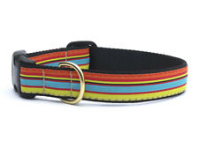 NWT Up Country Bright Stripe Dog Collar - Choose Size