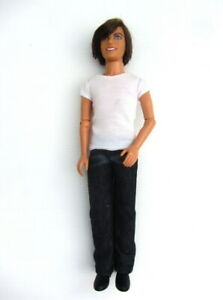 Disney HIGH SCHOOL MUSICAL 3 Sing Together TROY DOLL (Zac Efron) - Working