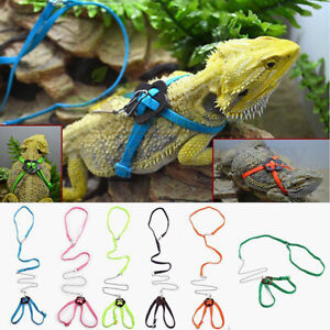 Fashion Adjustable Pet Lizard Cabrite Dragon Leash Harness Lead Rope 7 Colors