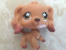 Littlest Pet Shop RARE Cocker Spaniel Dog Puppy #716 Dipped Brown Flower Eyes