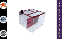 """Trigger Systems Ruby Red Cube 20"""" Sump Refugium - Everyday Free Shipping"""