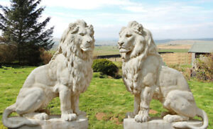 PAIR of Giant White Lions Garden Statues Completely Solid 135cm tall 1200KGS !