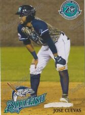 2017 Bridgeport Bluefish Jose Cuevas Atlantic League Independent