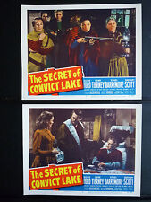 1951 THE SECRET OF CONVICT LAKE - 5 N. MINT WESTERN LOBBY CARDS - GENE TIERNEY