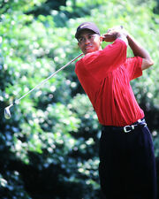 Pro Golfer TIGER WOODS Glossy 8x10 Photo Golf Print Poster Masters US Open