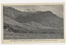 New Zealand, Pasturelands, Finest Lamb in The World Postcard, B244