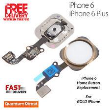 Componenti Per iPhone 6 Plus Oro per cellulari