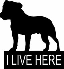 Staffy Warning Sign Plaque  I LIVE HERE Staffordshire Bull Terrier KEEP OUT