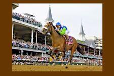 BARBARO - USA 2006 Kentucky Derby winner modern Digital Photo Postcard