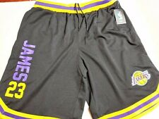 Los Angeles Lakers Lebron James Official NBA Jersey Shorts Sz Variety New NWT