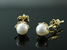 333 Gold Ohrstecker Süsswasser Zuchtperlen Perlen 5,75 mm 1 Paar