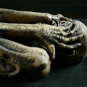 Halloween Haunted Ancient Egyptian Mummy Life-size Prop Graveyard Horror Theater