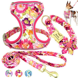 Printed Dog Harness and leash with Personalized Dog Collar Set Custom Engraved