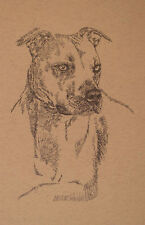 American Pit Bull Terrier Art Portrait Print 47 Kline adds your dog name free.