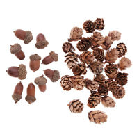40x Dried Pine cones Acorns Christmas Decorations Craft Home Table Ornaments
