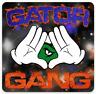 """Florida: University of Florida Gators """"Gator Gang"""" type MAGNET"""