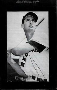 1950's Ted Williams JD McCarthy Postcard