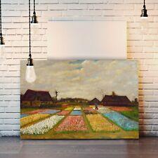 Van Gogh Field Of Bulbs Holland CANVAS WALL ART PAINTING PRINT ARTWORK CLASSIC