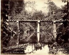 Cairns railway. Freshwater Creek Bridge - Australia, train c. 1885-90.