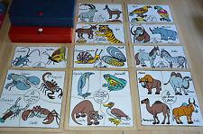 2 coffrets de 10 jeux de puzzle en bois pour bébé - animaux insectes natures