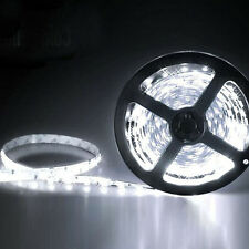 12V 5M SMD 3528 300LED Non Waterproof Flexible Warm Cool White Fairy Strip Light