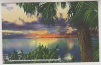 USA postcard - A Beautiful Sunset in the Sunshine State, Florida (A28)