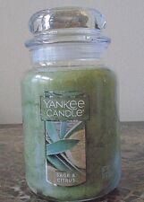 Yankee Candle   Sage & Citrus    22 oz  1 Single NEW  Free Ship