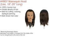 Student Mannequin State Board Mannequin Annie Mannequin #4807 BNIB