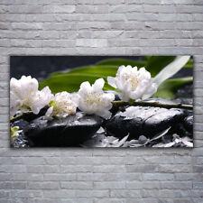 Wandbilder Glasbilder Druck auf Glas 120x60 Blumen Steine Pflanzen