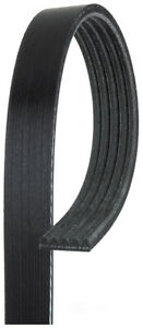 Serpentine Belt  ACDelco Professional  5K609