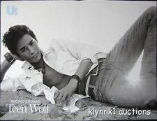BooBoo Stewart Poster Centerfold 2508A Teen Wolf