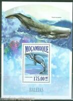 MOZAMBIQUE 2013 WHALES  SOUVENIR SHEET   MINT NH