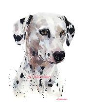 Dalmatian - Watercolour Limited Edition Print