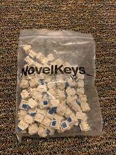 Novelkeys Blueberry mechanical keyboard MX switch tactile switches like pandas